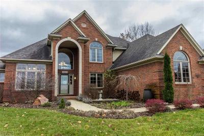 Oxford Single Family Home For Sale: 1081 Cedar St