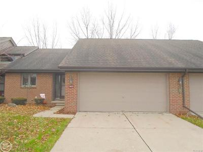 MACOMB Condo/Townhouse For Sale: 16170 Meadows Dr #Unit 32