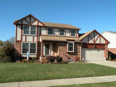 STERLING HEIGHTS Single Family Home For Sale: 13861 Diversion