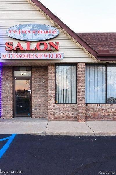 Troy Commercial For Sale: 6451 Rochester