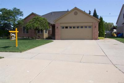 STERLING HEIGHTS Single Family Home For Sale: 40060 Carini