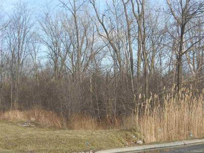 Clinton Twp Residential Lots & Land For Sale: Quinn Rd