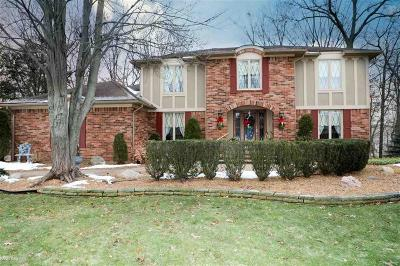 Rochester Single Family Home For Sale: 1645 Park Creek Court