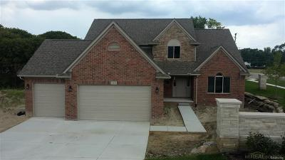 Shelby Twp Single Family Home For Sale: 7475 Park Terrace Lane
