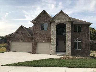 Shelby Twp Single Family Home For Sale: 7391 Park Terrace Lane