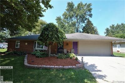 Romeo Vlg, Bruce Twp, Washington Twp Single Family Home For Sale: 58077 Bryson
