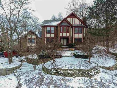 Northville Twp Single Family Home For Sale: 20012 Longridge Ct