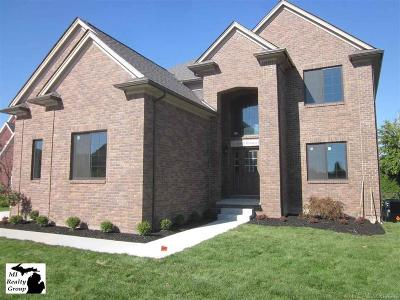 Chesterfield Twp Single Family Home For Sale: 26605 Hunters Dr
