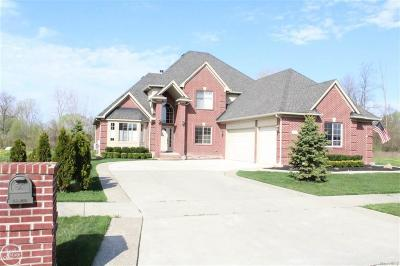 Macomb Twp Single Family Home For Sale: 45567 Shoal
