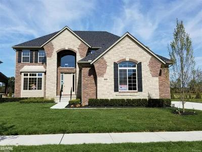 Shelby Twp Single Family Home For Sale: 8869 Softail Drive