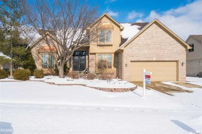 Shelby Twp Single Family Home For Sale: 13663 Middlebury