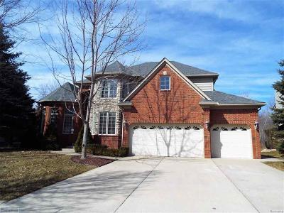 Washington Twp Single Family Home For Sale: 13265 Windham Dr