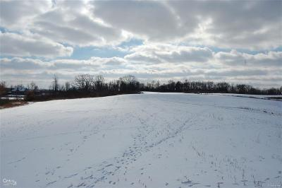 Washington Twp Residential Lots & Land For Sale: 32 Mile Rd