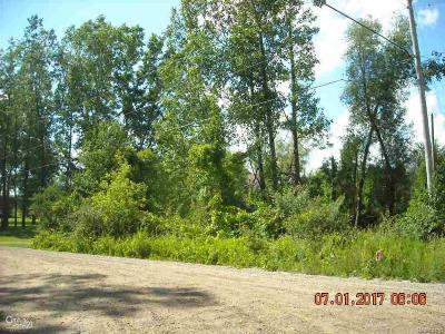 Brandon Twp Residential Lots & Land For Sale: Kile D Dr