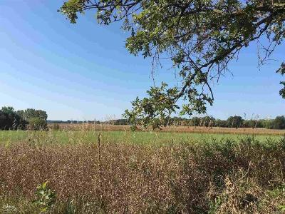 Bruce Twp Residential Lots & Land For Sale: Kidder Rd