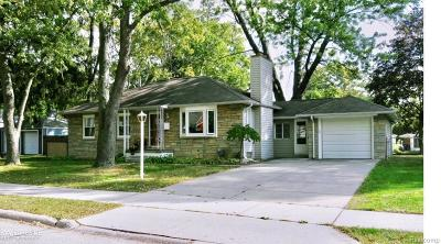 Single Family Home For Sale: 250 Wilson