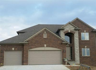 Auburn Hills Single Family Home For Sale: 3221 Zaher Dr.