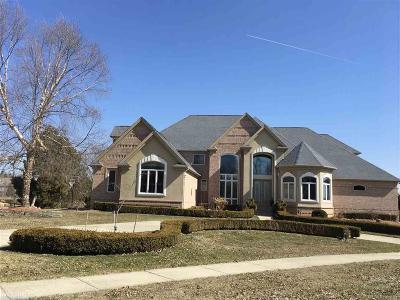 Washington Twp Single Family Home For Sale: 57054 Juliann Court