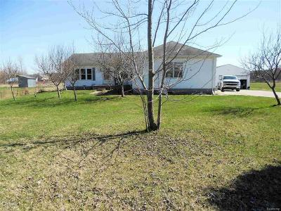 Saint Clair County, St. Clair County Single Family Home For Sale: 6291 Meisner Rd
