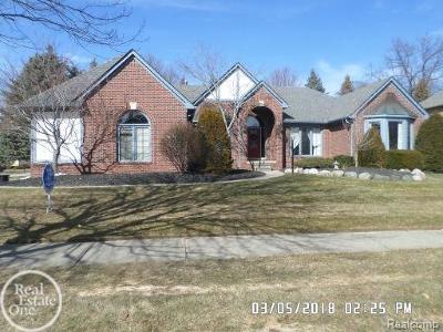 Shelby Twp Single Family Home For Sale: 13419 Diegel Dr