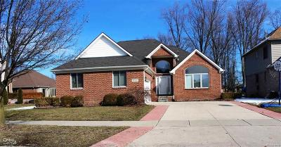 Clinton Twp Single Family Home For Sale: 41040 Vista Woods