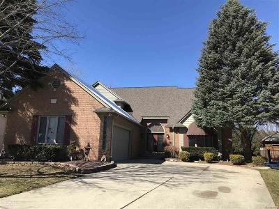 Sterling Heights Single Family Home For Sale: 42033 Farm Lane