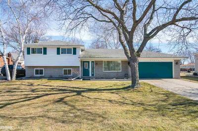 Harrison Twp Single Family Home For Sale: 41310 Gloca Mora