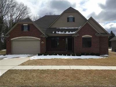 Sterling Heights Single Family Home For Sale: 14754 Hannebauer Ct.