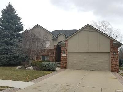Clinton Twp Single Family Home For Sale: 43036 Biland