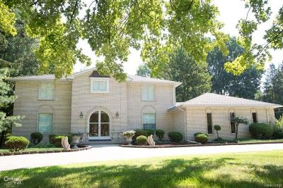 Macomb Twp Single Family Home For Sale: 46200 Heydenreich