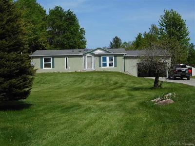 Lexington MI Single Family Home For Sale: $119,900