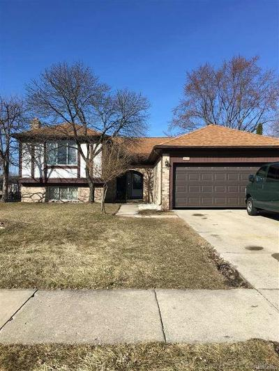 Macomb Twp Single Family Home For Sale: 47819 Lexington Dr