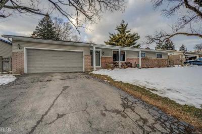 Shelby Twp Single Family Home For Sale: 4947 Southview