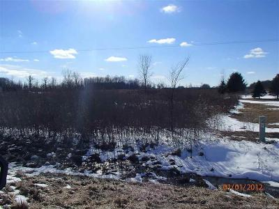 Croswell MI Residential Lots & Land For Sale: $55,000