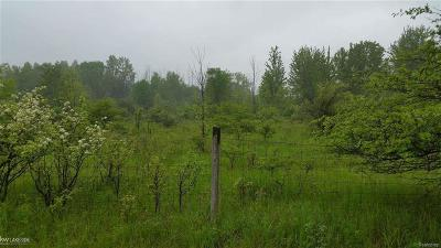 China Twp MI Residential Lots & Land For Sale: $42,000