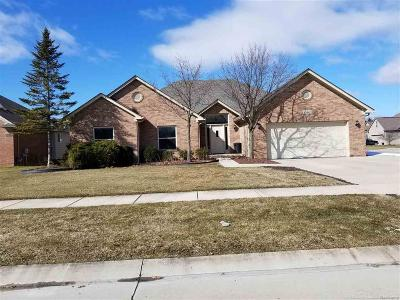 Chesterfield Twp MI Single Family Home For Sale: $295,000