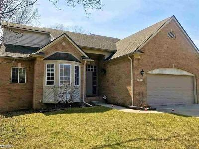 Troy Single Family Home For Sale: 1134 Woodslee Dr