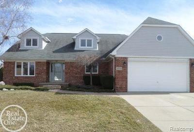 Clinton Twp Single Family Home For Sale: 42926 Ian Ct