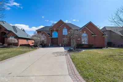 Sterling Heights Single Family Home For Sale: 39442 Ladrone Ct