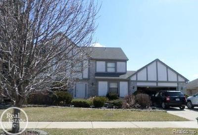 Sterling Heights Single Family Home For Sale: 41752 Pond View Dr