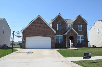 Macomb County Single Family Home For Sale: 52695 Stafford