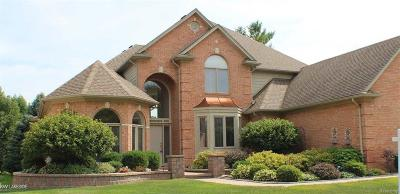 Shelby Twp MI Single Family Home For Sale: $529,950