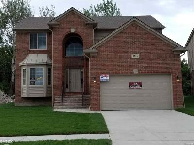 Macomb Twp Single Family Home For Sale: 48114 Manhattan