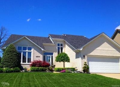 Macomb Twp Single Family Home For Sale: 18739 Riverside Glen Dr