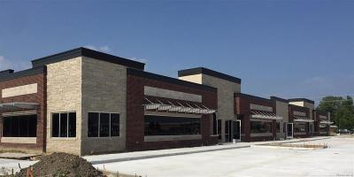 Macomb Twp Commercial Lease For Lease: Hayes #unit 8