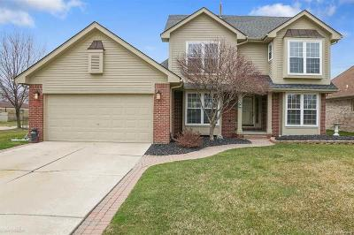Sterling Heights, Washington, Washington Twp, Bloomfield Hills, Bloomfield Twp, Novi, Royal Oak, Royal Oak Twp Single Family Home For Sale: 34453 Heartsworth