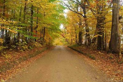 Addison Twp Residential Lots & Land For Sale: Hagerman Road
