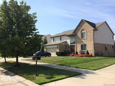 Chesterfield Twp Single Family Home For Sale: 52389 Creek Ln
