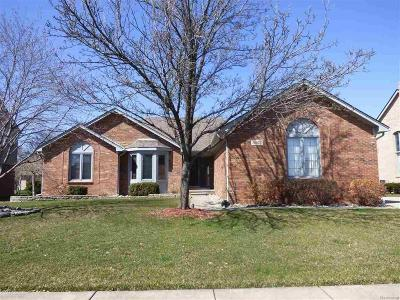 Sterling Heights, Shelby Twp, Utica Single Family Home For Sale: 13975 Glenwood Dr