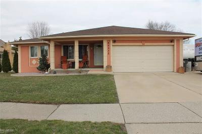 Clinton Twp Single Family Home For Sale: 40532 Passmore Dr.